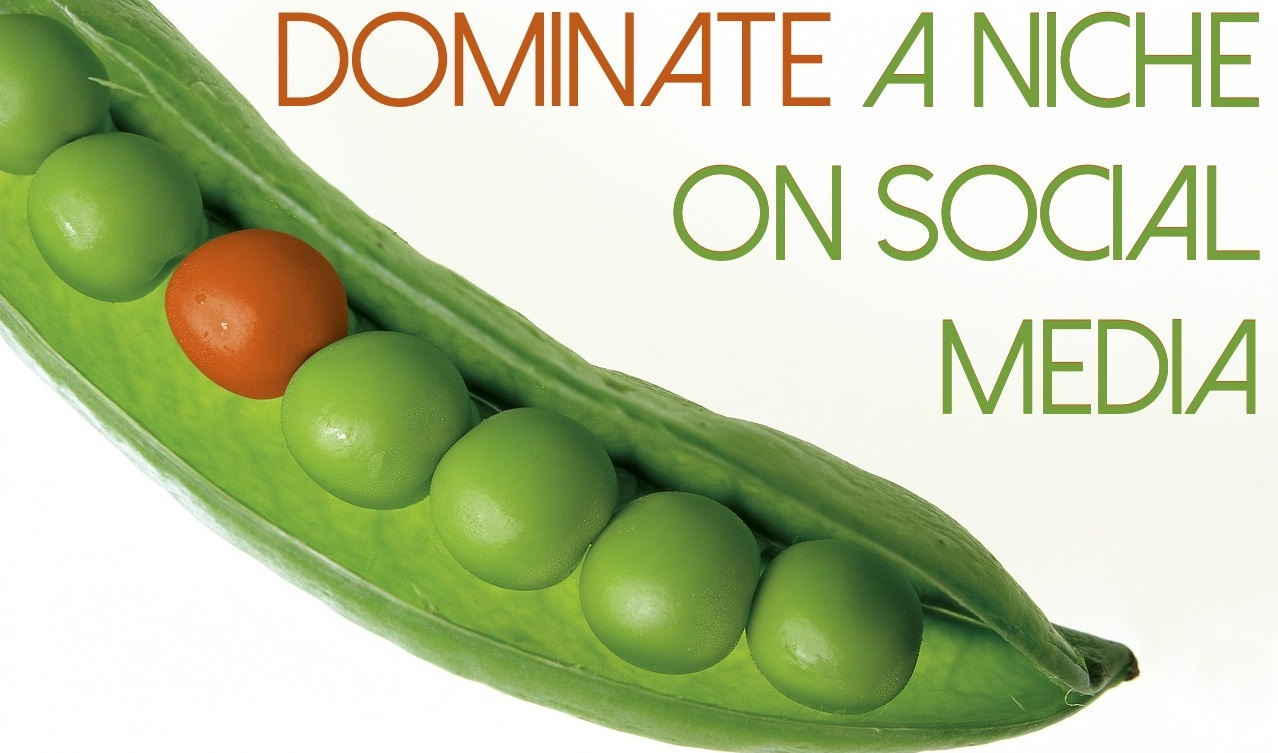 dominate a niche on social media peas in a pod branding differentiation